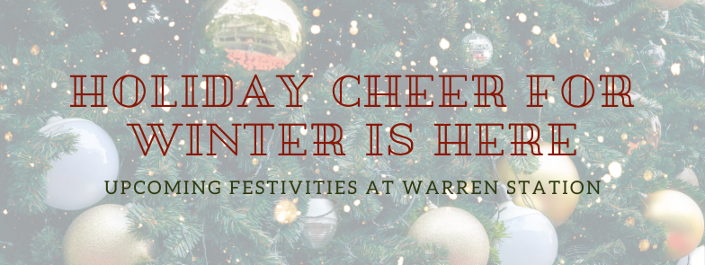 Holiday Cheer For Winter Is Here! Text Over Spruce Tree Background